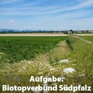 Landschaft Südpfalz