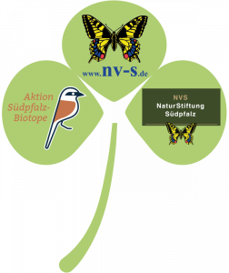 Logo NVS-Gruppe